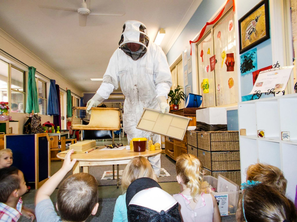 teaching school children about bees